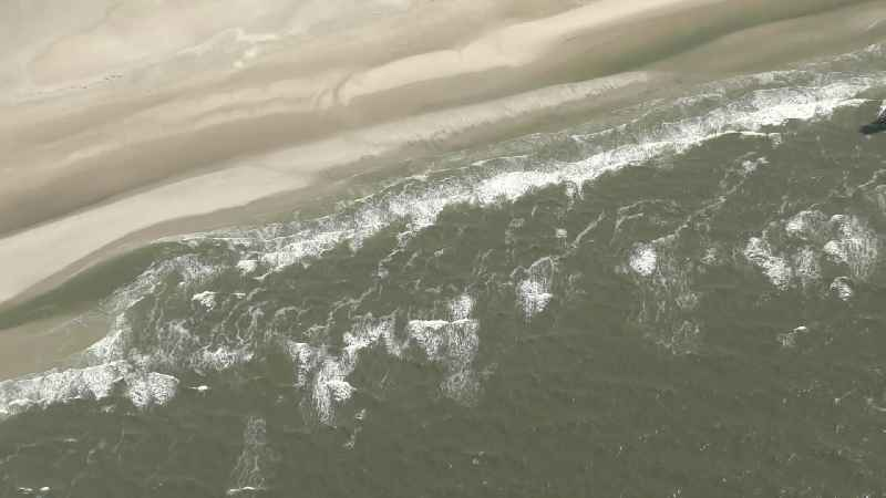Sandbank- forest area in the sea water surface of North Sea in Sankt Peter-Ording in the state Schleswig-Holstein